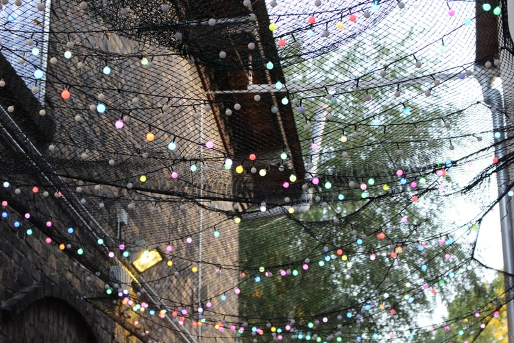 Transform Your Backyard with the Best Outdoor String Lights