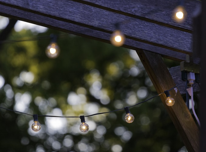 white string lights on the backyard